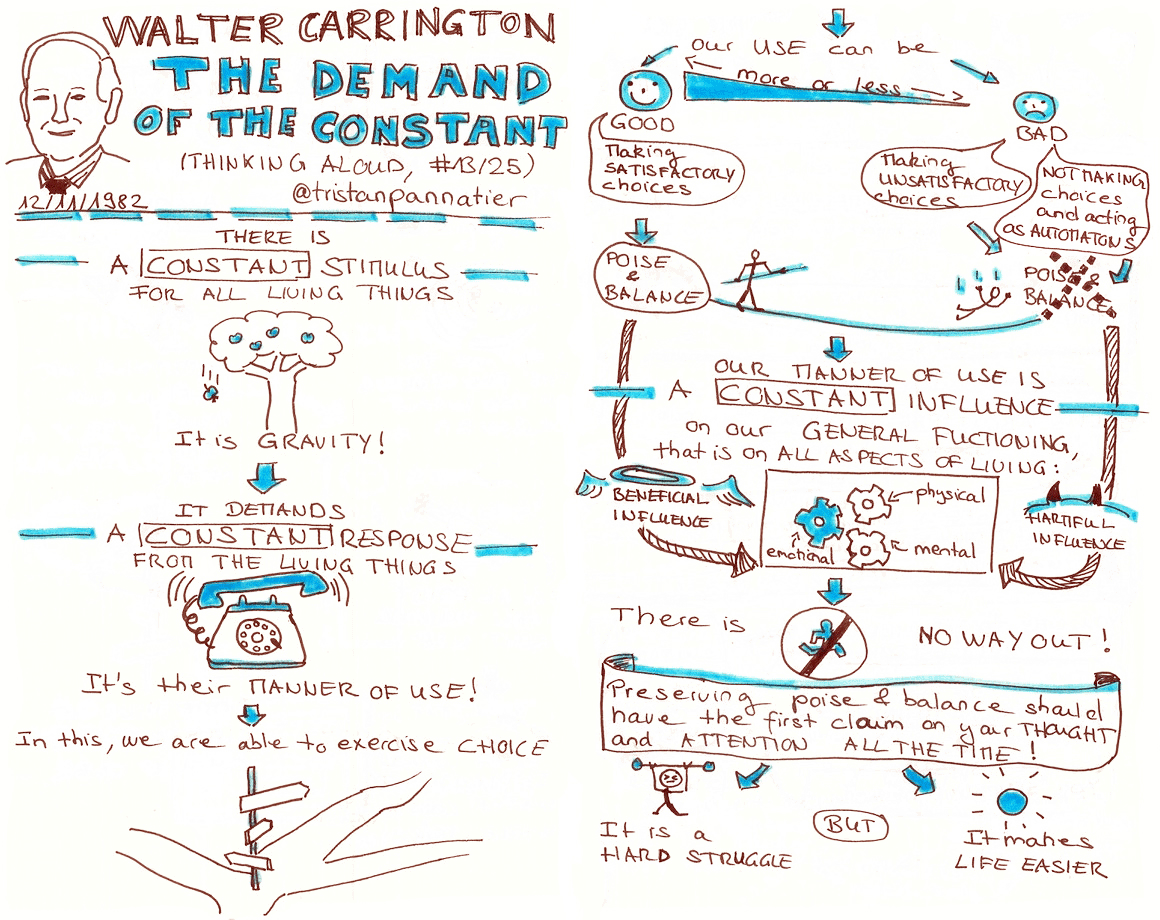 Walter Carrington Thinking aloud The demand of the constant Sketchnote